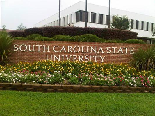 South Carolina University Best Counseling Graduate Degrees